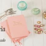 El diario de la Novia