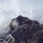Bodas y luchas de poder: cómo mantenerse firme